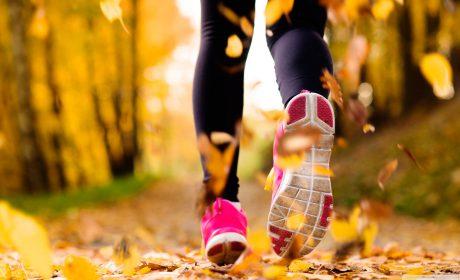Running lobortis justo ante In ut diam blandit
